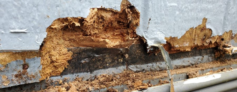 Replace Skirting on A Mobile Home
